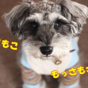 おぉぉーっ…せいちょうちゅう…☆