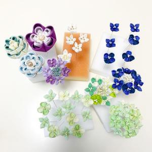 紫陽花と八重梅