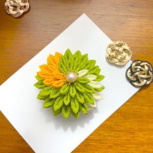 はんくす剣菊をプレゼント