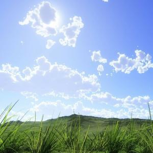 < 四季の励まし >「向上の人」こそ偉大! ――その心が功徳を生む。