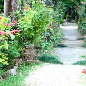 「この人の語らいは、まさに芸術」と評判の婦人が、鹿児島県の沖永良部島で活躍している。