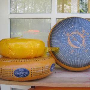 オランダ、逆転の発想でチーズ大国に!ーゴーダチーズ、エダムチーズはこうして生まれた