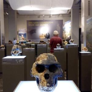 [トビリシ観光]トビリシで博物館をひとつだけ選ぶならここ!ージョージア国立博物館(Georgian National Museum)