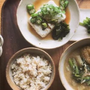 たまご豆腐とイカのおろしポン酢和えの献立
