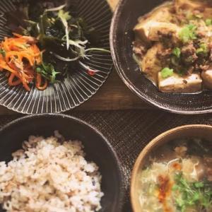 麻婆豆腐と野菜小鉢の献立
