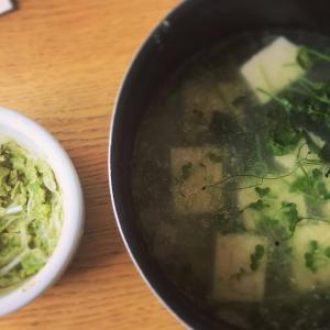 茹で鶏から作るお惣菜とスープと創作おかず