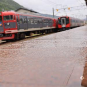 戸倉駅の雨の表情