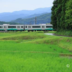 ET127系電車が森へと消える