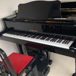 自分の癒しのために大人のピアノ