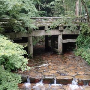 たまに温泉(番外編)〜京都