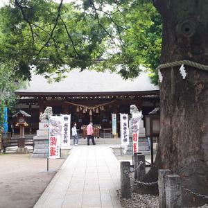 たまの一般銭湯~新田浴場(黒湯、薬湯)と東急多摩川線沿線の銭湯たち