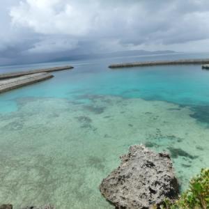 【儒艮】新城島のザンと西表島の人魚は違うという話
