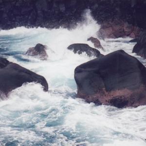 1998/12伊豆城ヶ崎ハイキングコース・蓮着寺(豪雨)