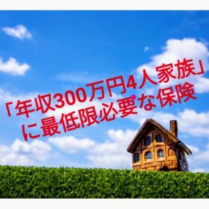 保険の意味を理解して節約しよう!世帯年収300万円台の場合