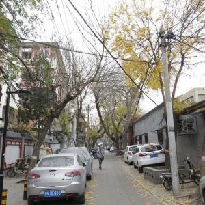 第217回 北京・蘇州胡同(5) 公然の秘密たる非合法な営業が繰り広げられていた。
