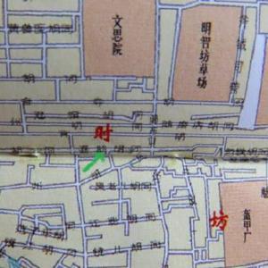 第226回 北京・喜慶胡同 カササギと一本のエンジュの木