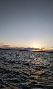 アマダイ&マダイ  (館山ゴムボート釣り)