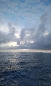 館山レイン  (館山ゴムボート釣り)
