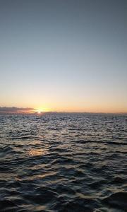 2019  ファーストフィッシング  (外房ゴムボート釣り)