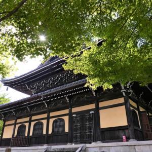 萩 / 京都・南禅寺
