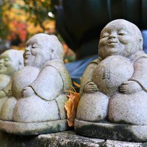 紅葉 / 京都・今熊野観音寺