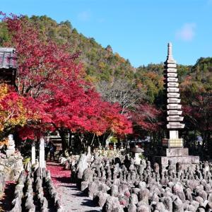 紅葉 / 京都・化野念仏寺