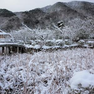 雪景色10 / 京都・天龍寺