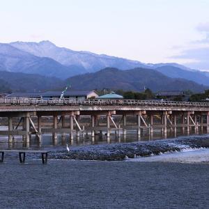 紅梅 / 京都・嵐山