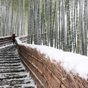 雪景色18 / 京都・化野念仏寺