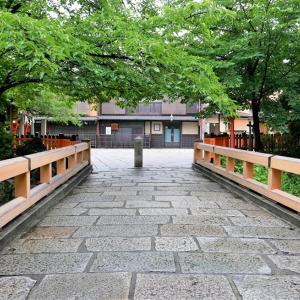 紫陽花 / 京都・祇園白川