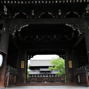 蓮 / 京都・東寺