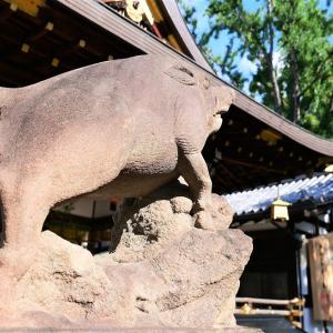 足腰御守 / 京都・護王神社