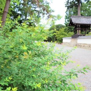 水路閣 / 京都・南禅寺