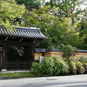 萩 / 京都・迎称寺