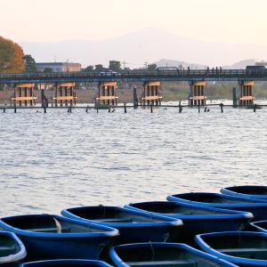 紅葉 / 京都・嵐山 渡月橋
