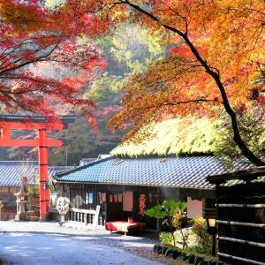 紅葉 / 京都・嵯峨鳥居本