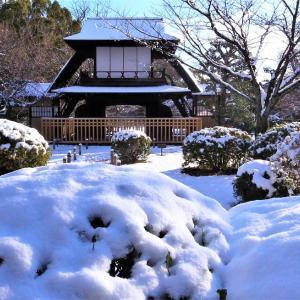 雪景色 / 京都・渉成園