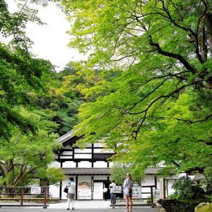新緑 / 京都・南禅寺