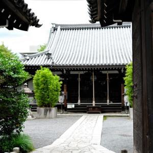 桔梗 / 京都・盧山寺