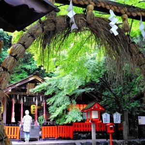 茅の輪 / 京都・野宮神社