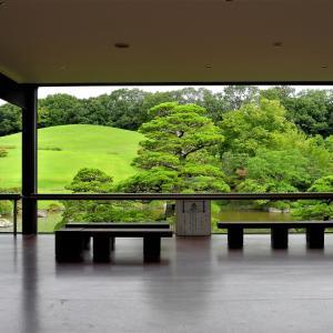 百日紅&ヤブラン / 大阪・万博公園(日本庭園)