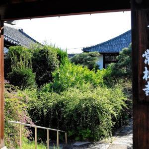 萩 / 京都・常林寺