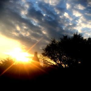 「最後の日」は突然やってきた。落葉の気持ちになりました。