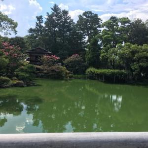 【レポート】お任せ京都癒しの旅、マンツーマンにて。