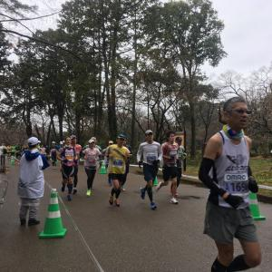 京都マラソン2020 応援して来ました。