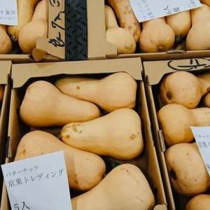 京都産のバターナッツ南瓜
