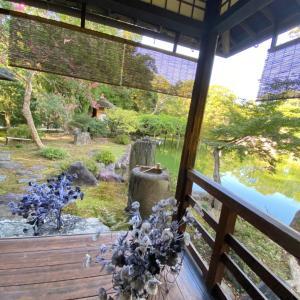 京都の日常、こんなところでも秋を感じています。