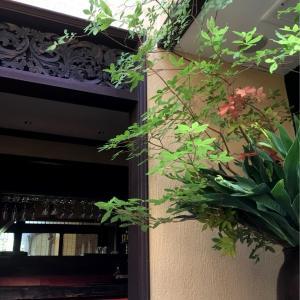 【ご案内】7月16日午後から五感で感じる京都旅