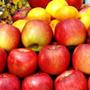 【教えてもらう前と後】食べ頃の絶品リンゴの見分け方!皮のツヤツヤ具合で判断。素人でも熟し具合がわかる、知って得する情報です♪