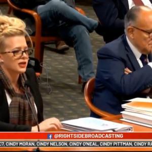 ミシガン州の公聴会‼️契約社員が見た⁉️再カウント⁉️
